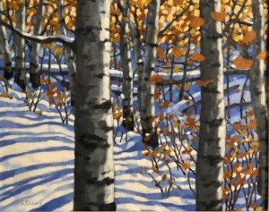 Aspens, oil, 16x20, framed,$1150