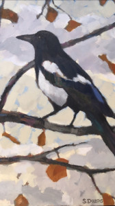Magpie 2, oil, framed, 11x7, $350