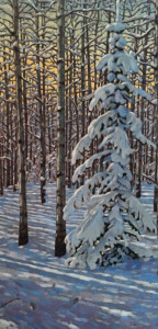 Snow Covered Spruce, 48x24, oil, SOLD