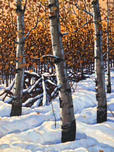 Fall Aspens, oil, 40x30, framed, available